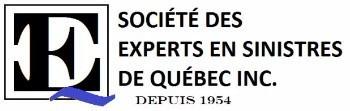 Société des experts en sinistres